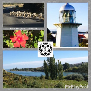 Wairoa Kotare eco village hawkes bay new zealand light house